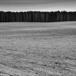 Pejzaż – Rusinowo