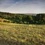 Pejzaż – Wolsko