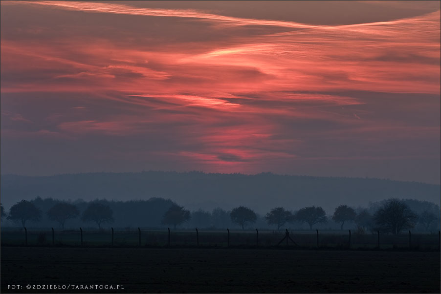 grabionna - zachód słońca