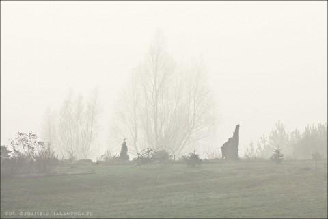Wolsko we mgle