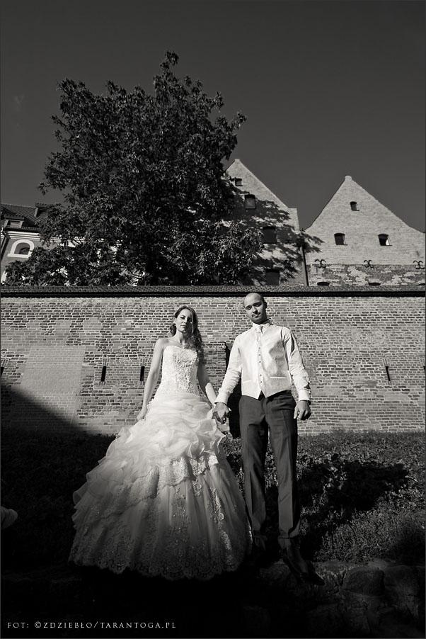 sesja ślubna sylwia dawid flisacza