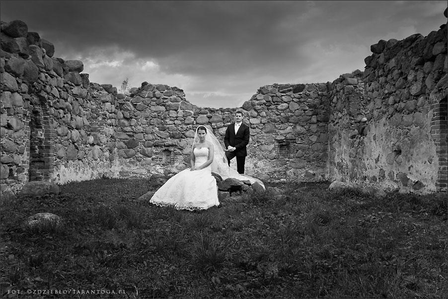 sesja ślubna joanna maciej zamek